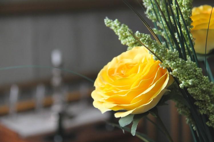 Rose jaune dans la salle Tonnay-Charente